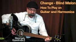 Learn how to play Blind Melon's Change on guitar and harmonica