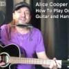 Alice Cooper Eighteen How to Play