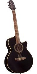 Takamine Acoustic Electric EG